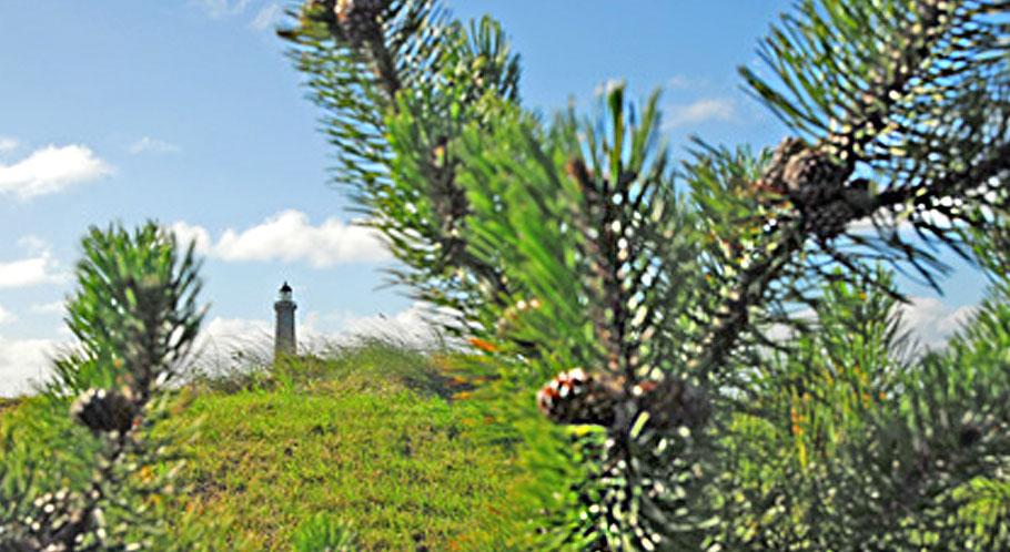 Blick auf den grauen Leuchtturm von Skagen