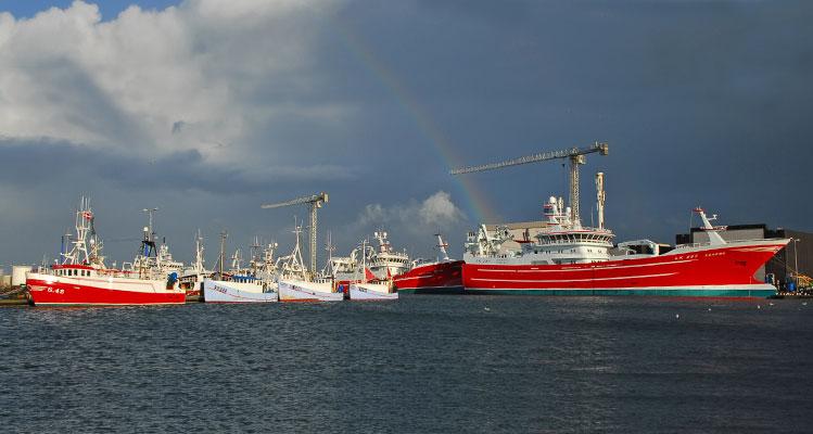Unter einem Regenbogen – Schiffe in Skagens großem Fischereihafen